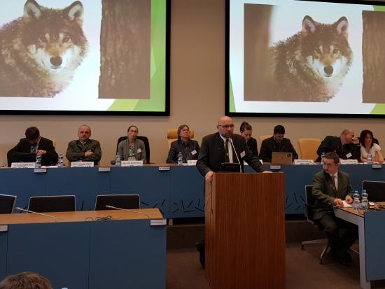 Vlk jako příčina vylidnění venkova a konce pastevectví: zaznělo na konferenci v Hradci Králové