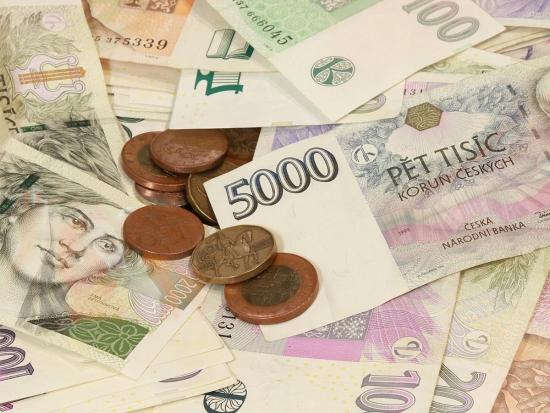 ČMMJ požaduje úlevu na DPH z pronájmů honiteb