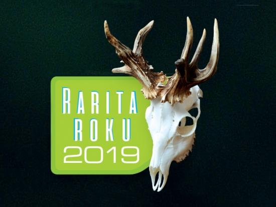 Velké finále soutěže Rarita roku 2019
