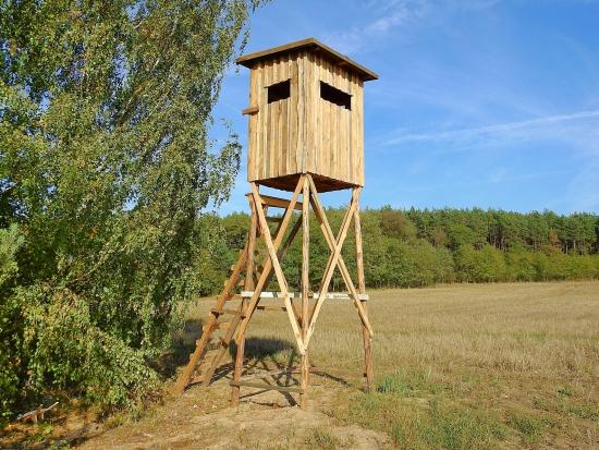 Ve Švédsku byli odsouzeni odpůrci lovu