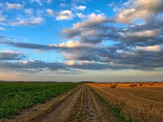 Společná zemědělská politika se více zaměří na ochranu životního prostředí