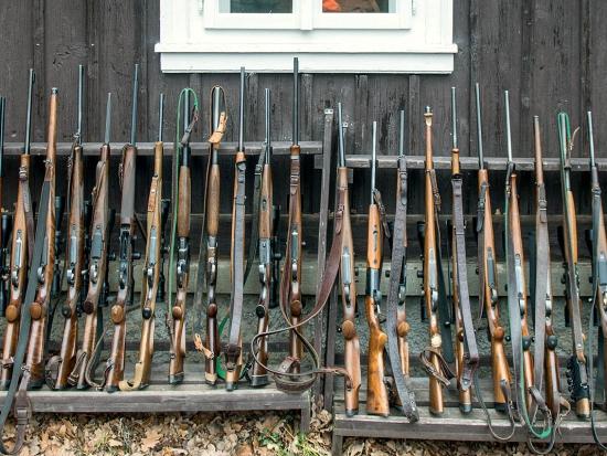 Návrh nového zákona o zbraních a co z něj vyplývá pro myslivost