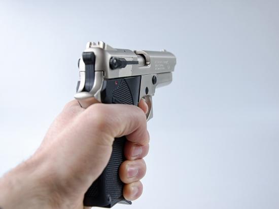 Rakousko: Zákon o zbraních přinese myslivcům úlevu