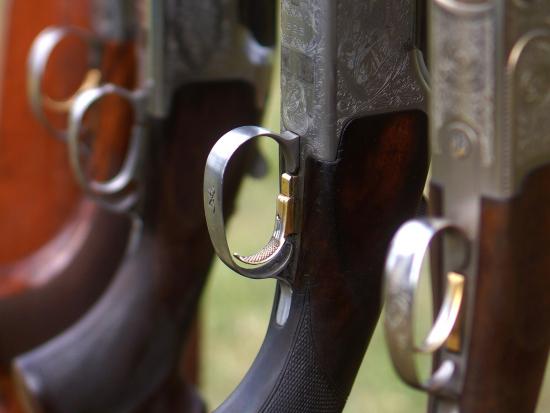 Senát schválil ústavní právo na zbraň